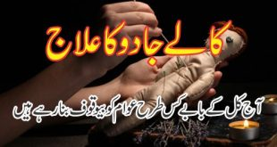 Muhammad Raza Saqib Mustafai Biography - Islamic Media